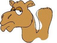 El camello y Zeus