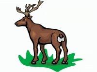 El ciervo en el pesebre de los bueyes