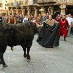 Toro de las bodas de Isabel, Teruel